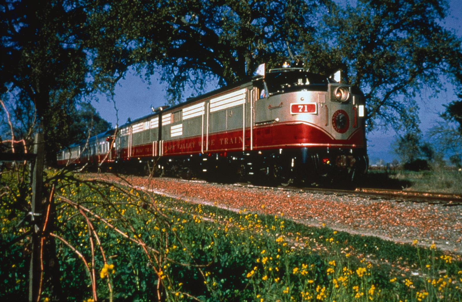 San francisco redwoods trains u s tours for Best time to visit napa valley wine country